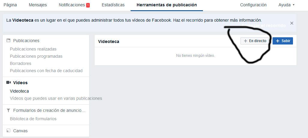 video_directo