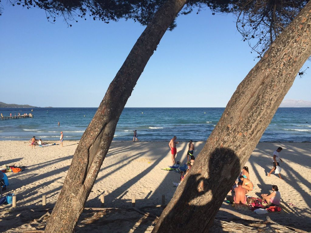 Las famosas vacaciones de Manuel Bartual