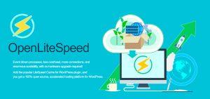 OpenLiteSpeed WordPress Servidor